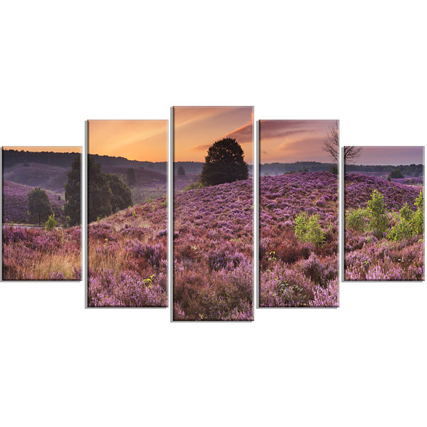 Designart Blooming Heather At Dawn Panorama Landscape Wrapped Canvas Art Print - 5 Panels
