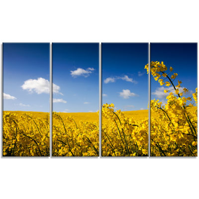 Designart Yellow Canola Field Landscape Photography Canvas Art Print - 4 Panels