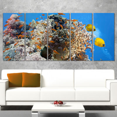Coral Scene Panorama Photography Canvas Art Print- 5 Panels