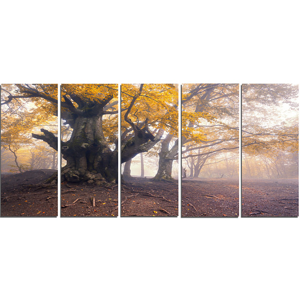 Design Art Dark Tree With Yellow Leaves LandscapePhotographyCanvas Print - 5 Panels