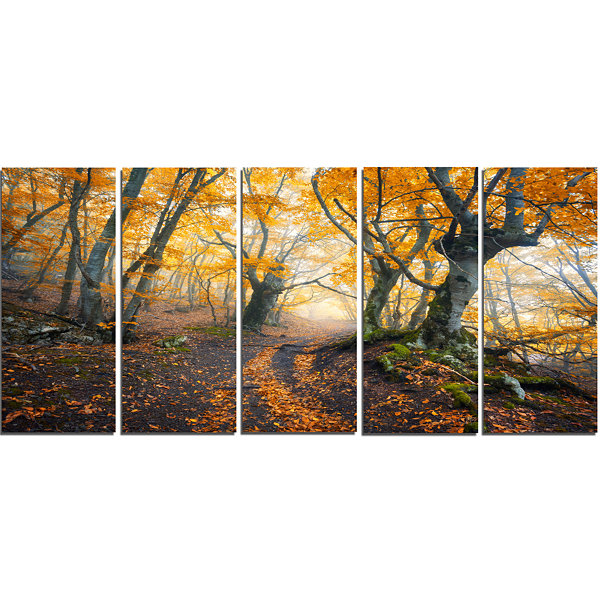 Designart Dark Yellow Old Forest In Fog LandscapePhotography Canvas Print - 5 Panels