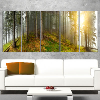 Early Morning Sun In Forest Landscape PhotographyCanvas Print - 4 Panels
