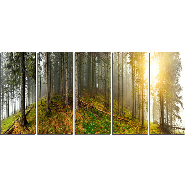 Designart Early Morning Sun In Forest Landscape PhotographyCanvas Print - 5 Panels