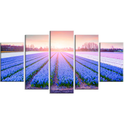 Designart Field Of Blooming Hyacinth Flowers Abstract Wrapped Canvas Artwork - 5 Panels