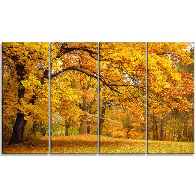 Designart Golden Autumn Forest Landscape Photography CanvasPrint - 4 Panels