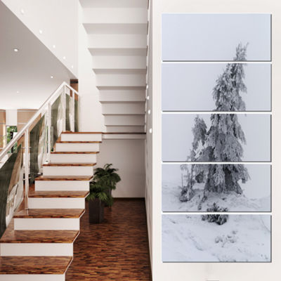 Designart Grayscale Valley In Frost Landscape Photo Canvas Art Print - 4 Panels