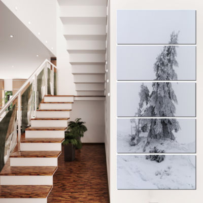 Designart Grayscale Valley In Frost Landscape Photo Canvas Art Print - 5 Panels