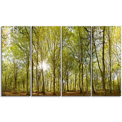 Designart Green Forest Panoramic View Landscape PhotographyCanvas Print - 4 Panels