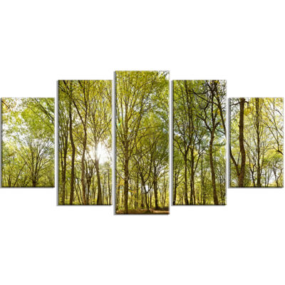 Designart Green Forest Panoramic View Landscape PhotographyWrapped Canvas Print - 5 Panels