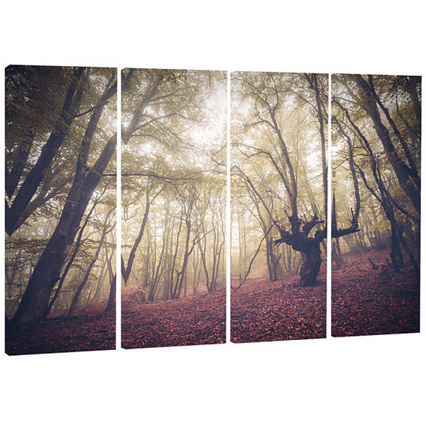 Designart High Rise Trees In Forest Landscape Photography Canvas Print - 4 Panels