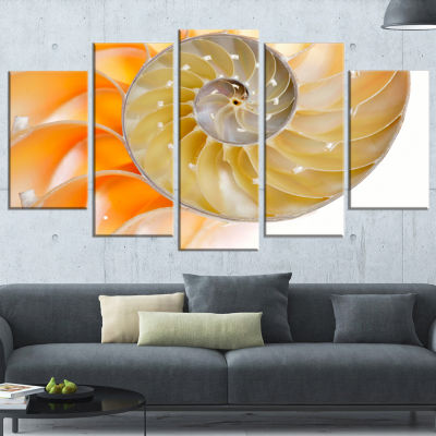 Designart Isolated Nautilus Shell Abstract CanvasArt Print- 5 Panels