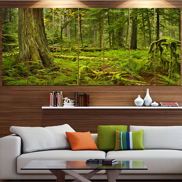 Design Art Lush Rainforest In Cathedral Grove Landscape Canvas Art Print - 7 Panels