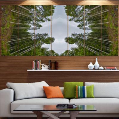 Designart Circle Composition Of Coniferous TreesLandscape Large Canvas Art Print - 5 Panels