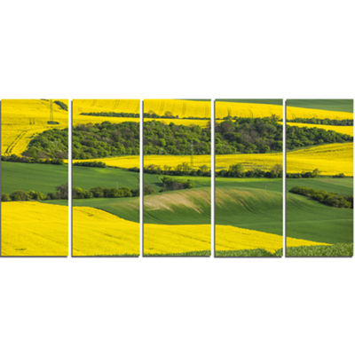 Designart Rapeseed Fields And Green Wheat Landscape Canvas Art Print - 5 Panels