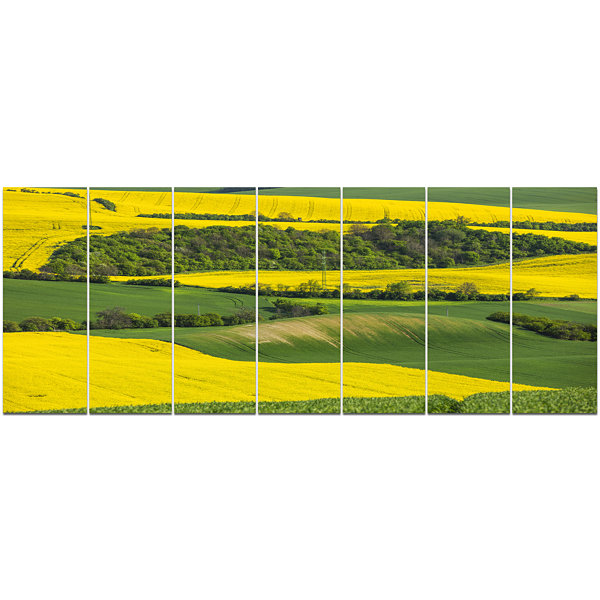 Design Art Rapeseed Fields And Green Wheat Landscape Canvas Art Print - 7 Panels