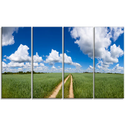 Designart Path In Bright Summer Panorama LandscapeCanvas Art Print - 4 Panels