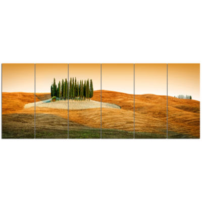 Cypress Grove Panorama Landscape Canvas Art Print- 6 Panels