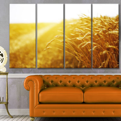 Bright Sunset Over Wheat Field Landscape Canvas Art Print - 4 Panels