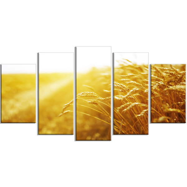 Design Art Bright Sunset Over Wheat Field Landscape Large Canvas Art Print - 5 Panels