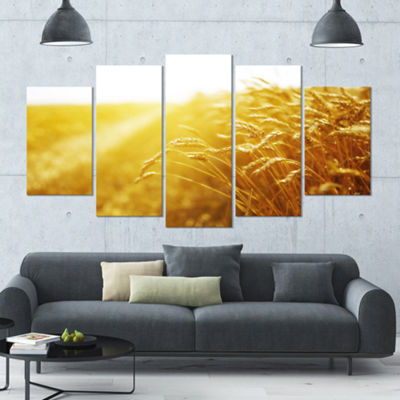 Designart Bright Sunset Over Wheat Field LandscapeLarge Canvas Art Print - 5 Panels