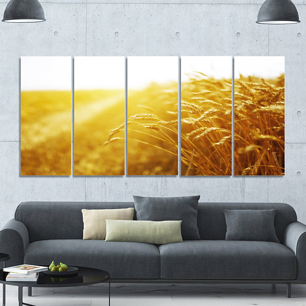 Designart Bright Sunset Over Wheat Field LandscapeCanvas Art Print - 5 Panels