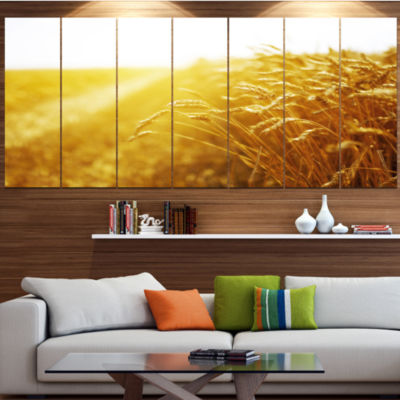 Bright Sunset Over Wheat Field Landscape Canvas Art Print - 7 Panels