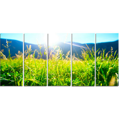 Designart Beautiful Green Nature Wonder LandscapeCanvas Art Print - 5 Panels
