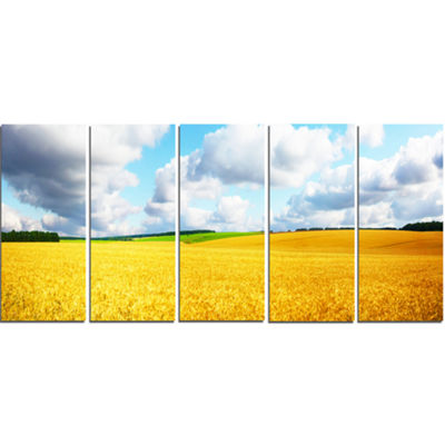 Designart Beautiful Field Panorama Landscape Canvas Art Print - 5 Panels