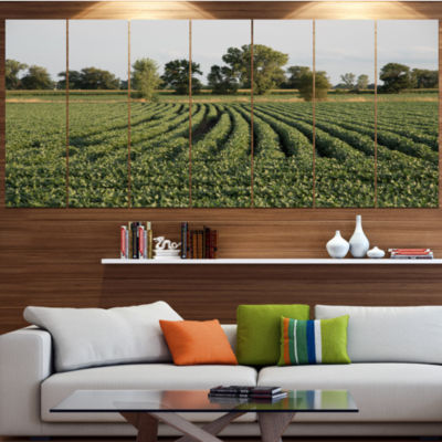 Designart Wisconsin Soybean Field Rows LandscapeCanvas Art Print - 7 Panels