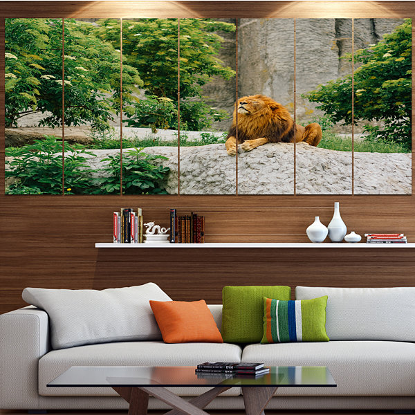 Design Art Big Lion Lying On Stones In Zoo Landscape Large Canvas Art Print - 5 Panels