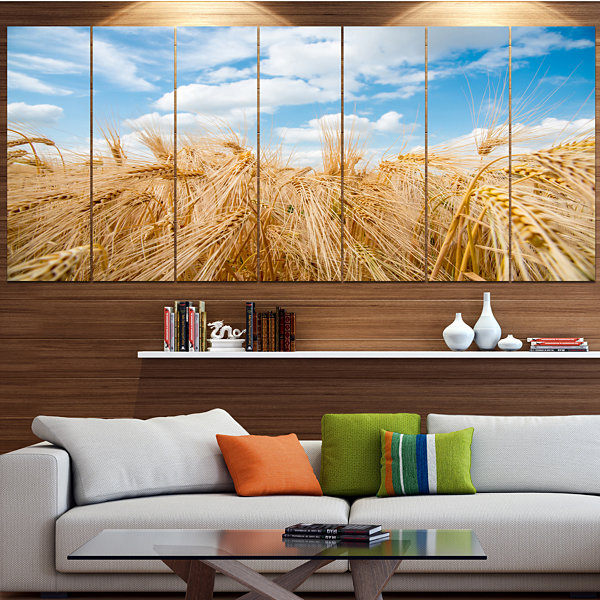 Designart Barley Field Under Blue Sky Landscape Canvas Art Print - 7 Panels