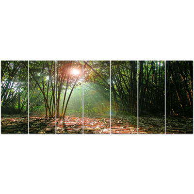 Designart Amazing Green Forest At Sunset LandscapeCanvas Art Print - 7 Panels