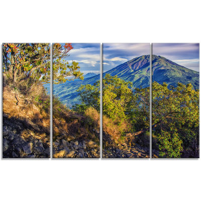 Merbabu Volcano In Java Landscape Canvas Art Print- 4 Panels