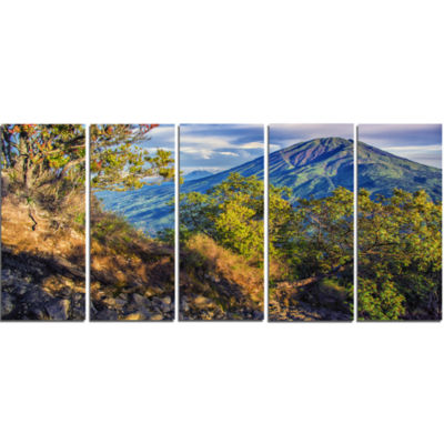 Merbabu Volcano In Java Landscape Canvas Art Print- 5 Panels