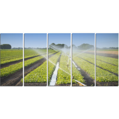 Beautiful View Of Crops Watering Landscape CanvasArt Print - 5 Panels