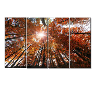 Picturesque Fall Forest Panorama Landscape CanvasArt Print - 4 Panels