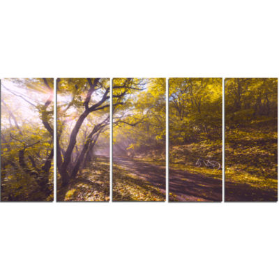 Bicycle Ride In Fall Forest Landscape Canvas Art Print - 5 Panels
