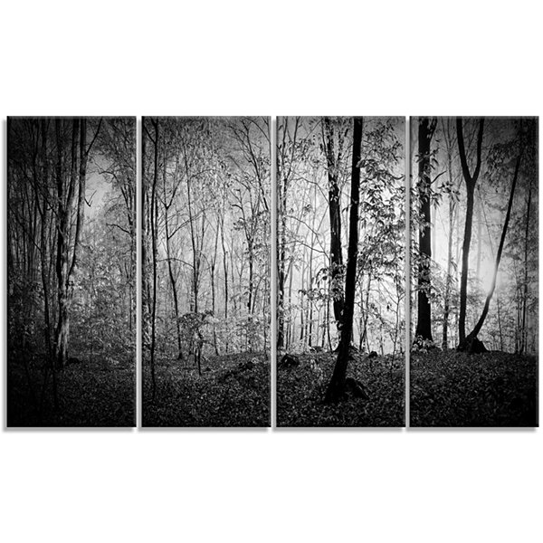 Designart Beautiful Forest Morning Panorama Landscape Canvas Art Print - 4 Panels