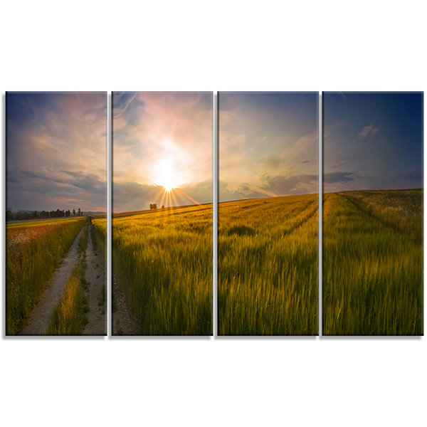 Designart Sunset In Field Of Grain Panorama Landscape Canvas Art Print - 4 Panels