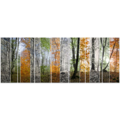 Wood Panorama Changing Seasons Landscape Canvas Art Print - 7 Panels