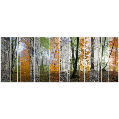 Designart Wood Panorama Changing Seasons LandscapeCanvas Art Print - 7 Panels