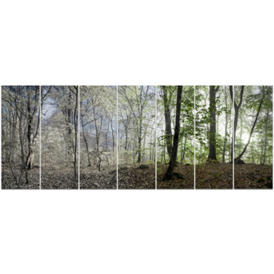 Designart Green Morning In Forest Panorama Landscape Canvas Art Print - 7 Panels