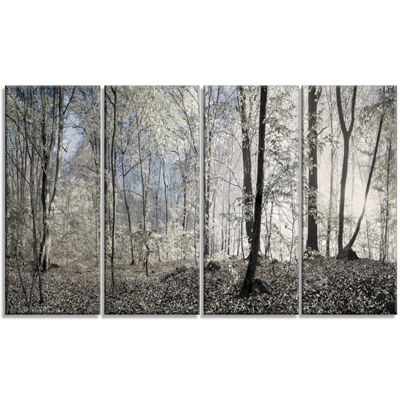 Designart Dark Morning In Forest Panorama Landscape Canvas Art Print - 4 Panels