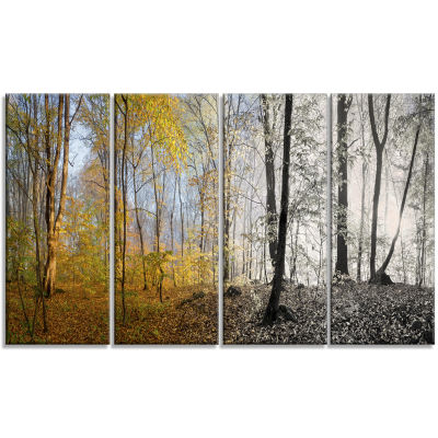 Yellow Morning In Forest Panorama Landscape CanvasArt Print - 4 Panels