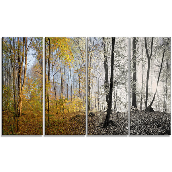 Designart Yellow Morning In Forest Panorama Landscape Canvas Art Print - 4 Panels