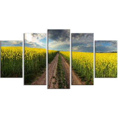 Sunset Over Canola Panorama Landscape Large CanvasArt Print - 5 Panels