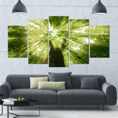 Designart Sunlight Peeking Through Green Tree Landscape Canvas Art Print - 4 Panels