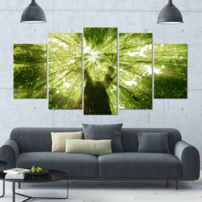 Designart Sunlight Peeking Through Green Tree Landscape Canvas Art Print - 5 Panels