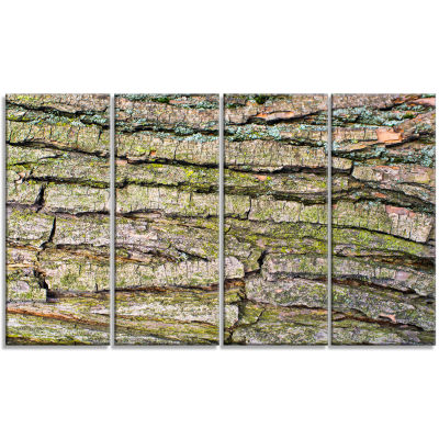 Thick Tree Skin Close Up Floral Canvas Art Print -4 Panels