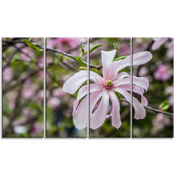 Design Art Beautiful Magnolia Flowers Large FloralCanvas Art Print - 4 Panels